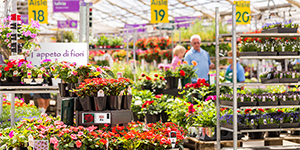 Retail Solutions, Garden Centre