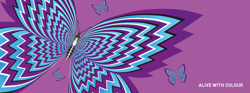 Alive with colour butterfly banner
